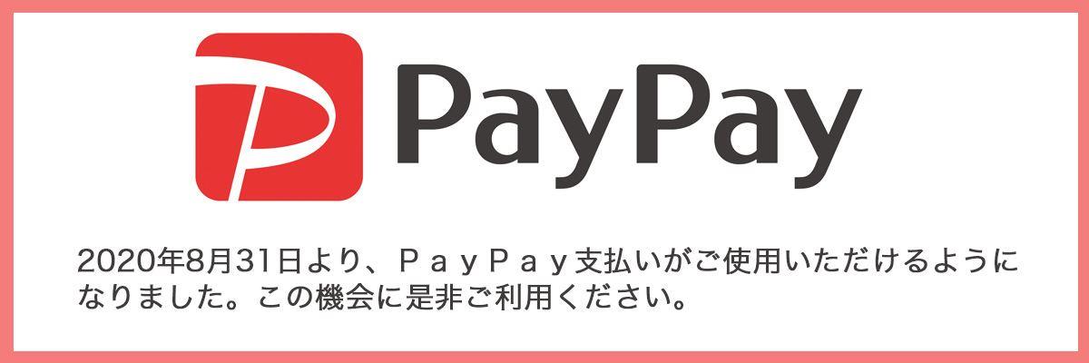 PayPay支払開始しました。