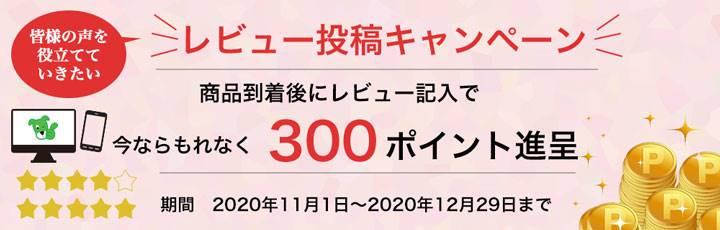 期間限定 レビュー記入で300ポイントプレゼント